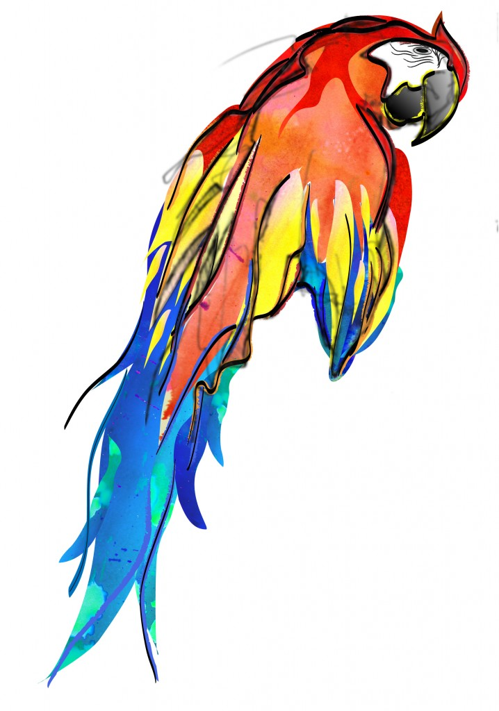 parrotrightside